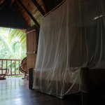 Foto de Pachamama Tropical Garden Lodge