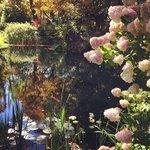 Inn pond