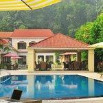 Swimming Pool and Lounge - Le ROI Corbett