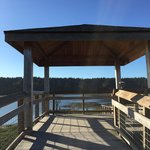 Nisqually Reach Nature Center Foto