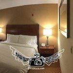 Room 311