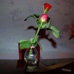 profumo di fiori e dediche di amore sul muro