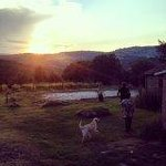 Stunning sunset at the farm