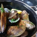 NZ green lipped mussels in creamy garlic and white wine