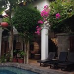 Poolside view of the courtyard
