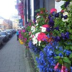 Great flower display