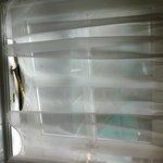 Bathroom window and net curtain