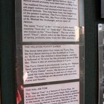 Good History of Furry Dance