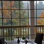 Foliage view from dining area