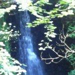 Waterfall at Falling Foss