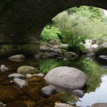 the bridge at badgers holt