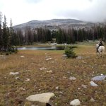 Medicine Bow Mts - all day ride