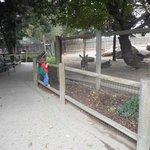 Applegate Park Zoo