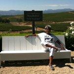 Silverado Bench overlooking the valley