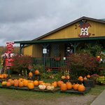 Knaebe's Mmmunchy Krunchy Apple Farm & Cider Mill