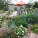 Outdoor gardens at Jefferson Vineyards