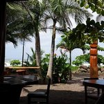 View of the Beach from inside Tiki Hut