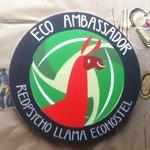 Red Psycho Llama EcoHostel Foto