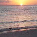 Gorgeous sunset at Gulf Beach Resort condos