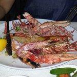 Lobster n Steak