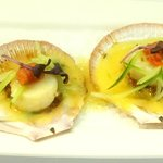 Hervey bay scallops with pulled pork & cucumber