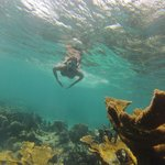 Reserva marinha de Hol Chan