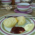 Delicious scones with jam & clotted cream!