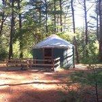 Barrett's Pond Yurt A