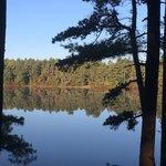 Barrett's Pond