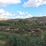 Verde River Behind Campground