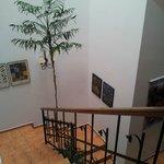 Les escaliers du patio