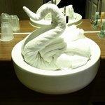 Didn't expect a swan in my bathroom!