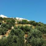 Photo of Ilios Village