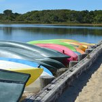Chappaquiddick Beach - Trustees of Reservations Kayaks