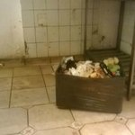 kitchen.. rotten food left for 4 days never moved