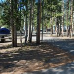 Loop A (RVs and Tents)