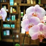Photo de Love Organic Salon, Spa & Yoga