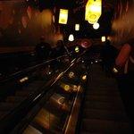 Tangled-themed escalators