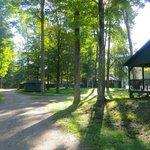 Buffalo Cabin Trail