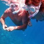 snorkel at ras mohamed