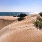 Dune spiaggia di Marispica