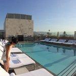 Rooftop pool is divine