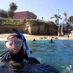 A new diver at the La Jolla Cove - photo by Kyle McBurnie