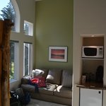Living room area, fridge and microwave