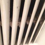Gross exhaust fan in the bathroom