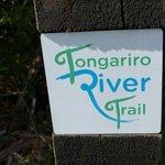 Tongariro River - walking trail