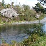 Tongariro River in New Zealand