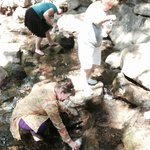 Collecting the purest water on Earth from the Headwaters of the Sacramento River, Mt. Shasta.