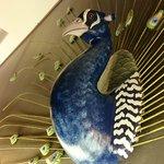 peacock above headboard