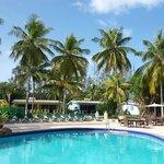 Giardino tropicale e piscina